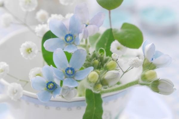 春の一押し☆メニュー