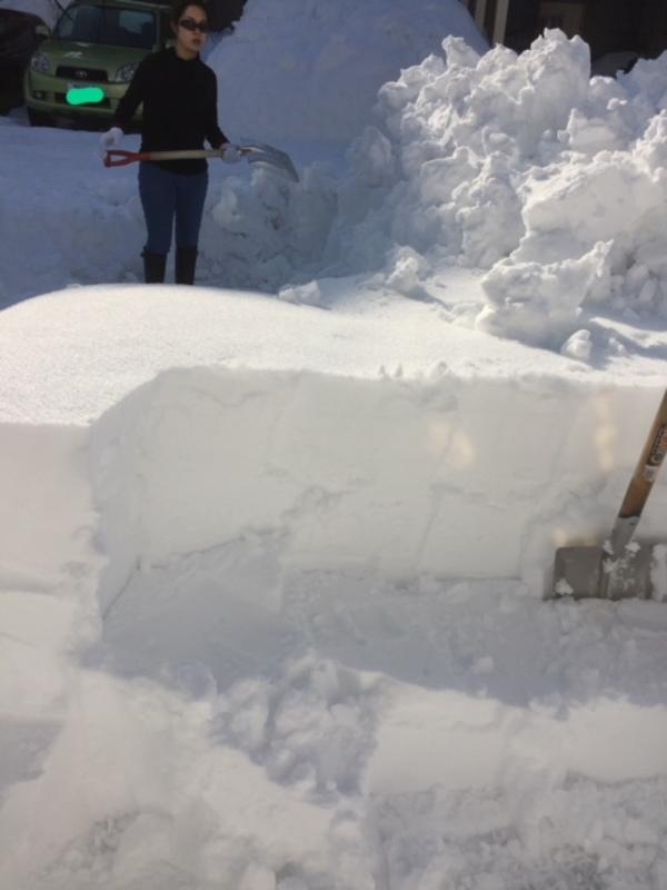 大雪で沢山みかけた人の「善」